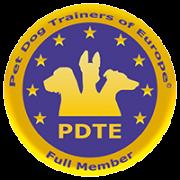 pdte-200-200